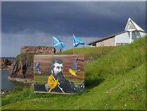 NT6779 : John Muir Poster at the Glebe Dunbar by Jennifer Petrie