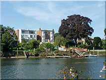 TQ1672 : Houses overlooking River Thames by Robin Webster
