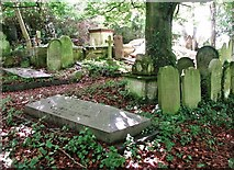 TG2408 : Graves in Section E by Evelyn Simak