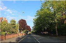 SP5174 : Hillmorton Road, Rugby by David Howard
