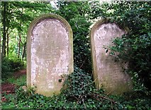 TG2408 : Gravestones beside the path by Evelyn Simak