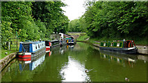 SP1876 : Canal north of Knowle Locks near Solihull by Roger  Kidd