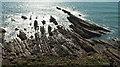 SS1905 : Rocks, Efford Ditch by Derek Harper