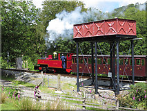 SH5848 : Russell at Beddgelert by Gareth James
