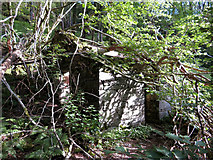 SH6251 : Derelict building in Nantgwynant by Gareth James