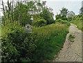 TQ2711 : Summer Down, South Downs Way by PAUL FARMER