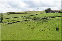 SE0118 : Pennine fields by Upper Wormald Farm by Bill Boaden