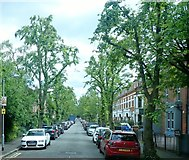 J3472 : The tree lined North Parade viewed from the Ormeau Road by Eric Jones