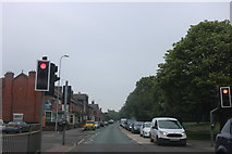 SK9769 : Pedestrian crossing on South Park, Lincoln by David Howard