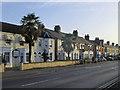 TL4656 : Cherry Hinton Road: evening light by John Sutton