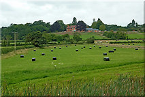 SP1876 : Farmland south-east of Knowle near Solihull by Roger  Kidd
