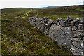 ND0719 : Orthostat in dry stone wall by Mick Garratt