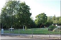SP8888 : West Glebe Park on Cottingham Road, Corby by David Howard