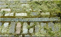 NS5565 : Doomster Hill inscription, part 2 by Alan Murray-Rust