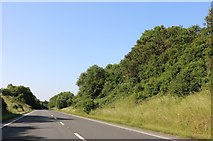SP9058 : The A509 Bozeat bypass by David Howard
