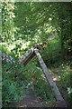 TL6521 : Fallen Fencepost on Brook St by Glyn Baker