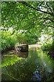 TL6420 : River Chelmer by Glyn Baker