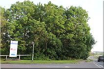 SP9189 : The entrance to Corby Innovation Hub by David Howard