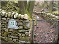 NY1717 : Ghyll Wood Path Entrance, National Trust by Darrin Antrobus