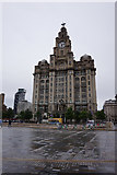 SJ3390 : The Royal Liver Building, Liverpool by Ian S