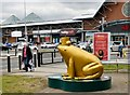SJ8990 : Midas at the Peel Centre by Gerald England