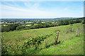 ST9673 : Bencroft Hill by Des Blenkinsopp