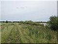 SE7126 : Transpennine Trail north of Rusholme Wind Farm by John Slater