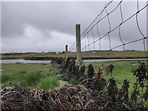 NB2133 : Fence by Loch Gealavat, Isle of Lewis by Claire Pegrum