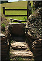 SX8557 : Double stile by Paignton Road by Derek Harper