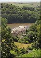 SX8557 : New houses, Stoke Gabriel by Derek Harper