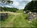 SE2547 : Bridleway diverted around Bogridge Farm, Leathley by Humphrey Bolton