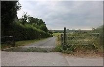 SU1860 : Track to Abbey Farm, Little Salisbury by David Howard