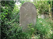 TG2408 : The grave of George Townshend Bull by Evelyn Simak