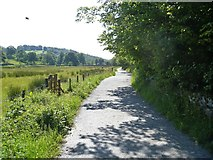 NY3204 : Elterwater to Skelwith Bridge [2] by Michael Dibb