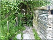 NY3303 : Skelwith Bridge to Slater Bridge [5] by Michael Dibb