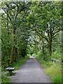 SN6962 : Former railway course north-east of Tregaron in Ceredigion by Roger  Kidd