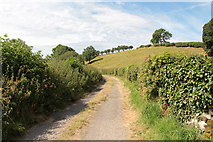 SD5273 : A walk along Kirkgate Lane (1) by Kate Jewell