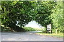 SU3062 : The entrance to Tyler Hardwoods, Shalbourne by David Howard