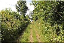 SD5273 : A walk along Kirkgate Lane (10) by Kate Jewell