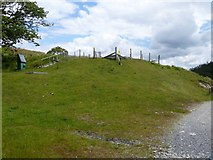 NY3103 : Track from Dale End to Elterwater [2] by Michael Dibb