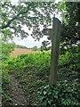 TQ6610 : Footpath Sign, Boreham Lane by PAUL FARMER