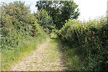 SD5273 : A walk along Kirkgate Lane: views from the highest point (12b) by Kate Jewell