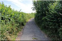 SD5273 : A walk along Kirkgate Lane (23) by Kate Jewell
