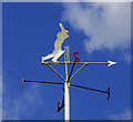 SK6370 : Weather vane, cricket ground, Thoresby Park by Brian Robert Marshall