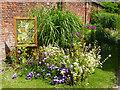 ST2885 : Citrus Celebrations (11), Tredegar House Gardens by Robin Drayton