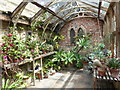 TQ7468 : A greenhouse in the garden at Restoration House by Marathon