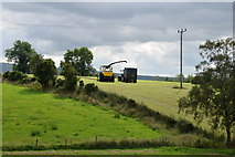 H4178 : Harvesting grass, Killinure by Kenneth  Allen