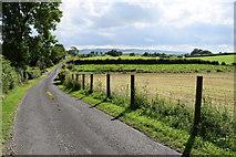 H4178 : Minor road, Gortnacreagh by Kenneth  Allen