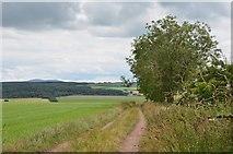 NS9740 : Field track, Hillhead by Jim Barton