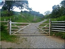 NY2925 : The ascent to Latrigg [11] by Michael Dibb